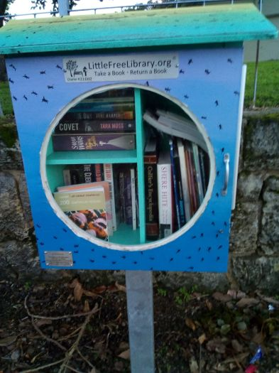 little-free-library-VP